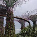 Отчет о путешествии в Сингапур 01.05.2017 (111-Й ДЕНЬ ПУТИ)