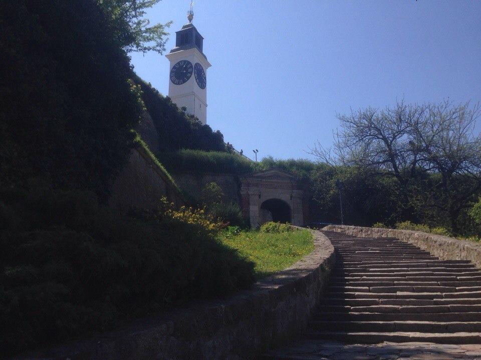 Отчет о путешествии в Белград Нови-Сад