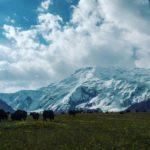 Отчет о путешествии в Киргизию. Ош 09.07.2017 (180-Й ДЕНЬ ПУТИ)