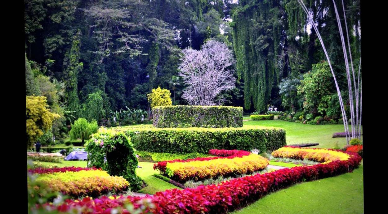 Что посмотреть в Мельбурне? Королевские ботанические сады