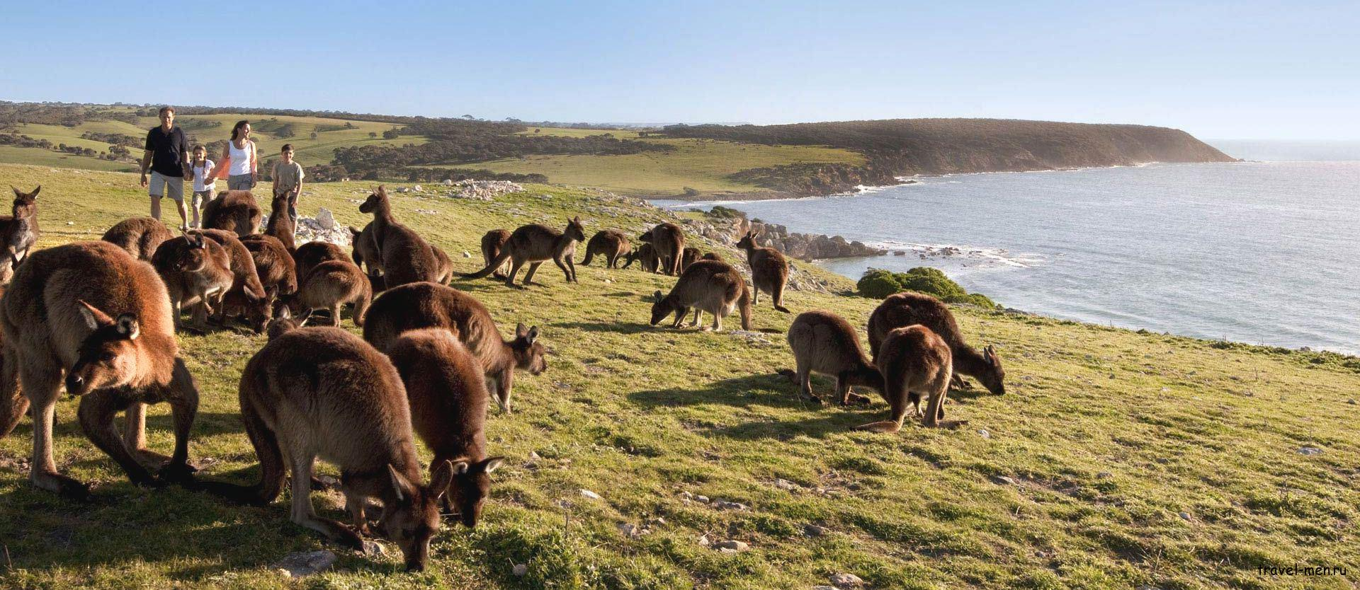 Австралия фото