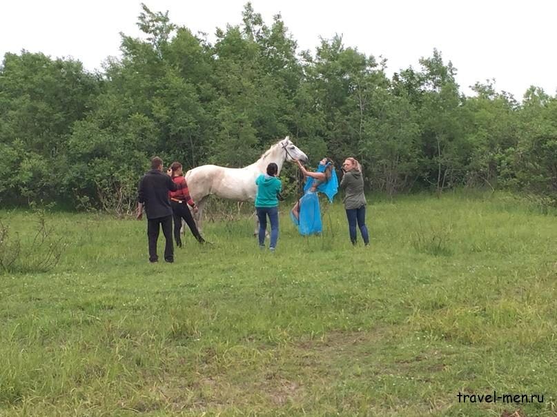 Конные прогулки. Фотосессия «Восточная женщина с конем»